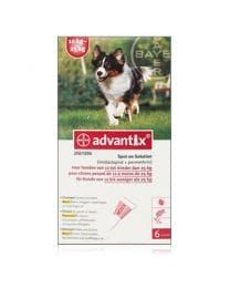 Advantix hond 250/1250