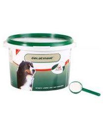 Primeval gelatinaat hond 2 kg