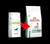 Royal Canin Diabetic hond 12 kg