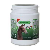 Primeval Stressless Paard 1260 gram