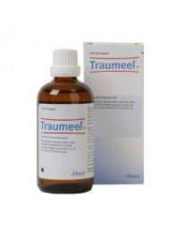Traumeel H 100 ml