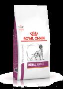 Royal Canin Dog Renal Select - 10 kg