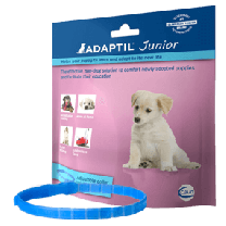 Adaptil Halsband Junior