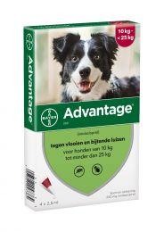 Advantage 250 Hond 10-25 kg