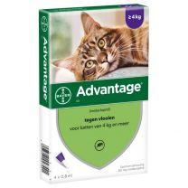 Advantage 80 Kat > 4 kg