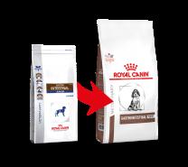 Royal Canin Dog Gastro Intestinal Junior 2,5 kg