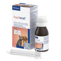 Hyaloral kat/kleine hond - 50 ml