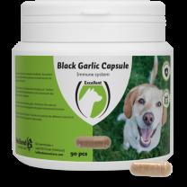 Black Garlic capsule Hond