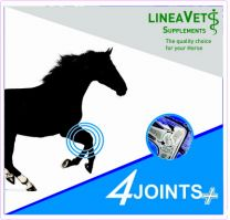 Linea Vet 4Joints+ 1000 ml