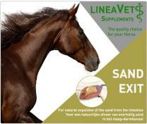 Sand-ex = Sand exit 1,5 kg