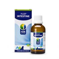 Puur Intestine / Darm 50ml