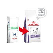 Royal Canin Dog Dental Small dogs - 3,5 kg